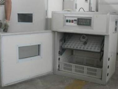 英国兰卡斯特中国企业催化项目——生产孵化器和育雏器
