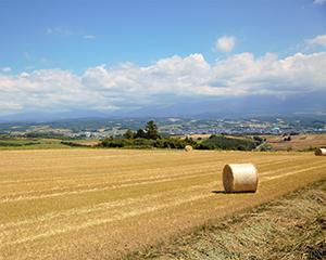 德国秸秆环保组合式浆肥技术寻找中国合作伙伴