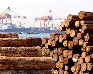 日本木材出口量达到历史新高,主要销往中国