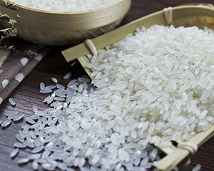 柬埔寨大米联盟有意与中国大米进口企业开展贸易合作