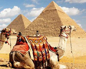 中国驻埃及使馆提醒中秋国庆期间赴埃中国游客注意安全