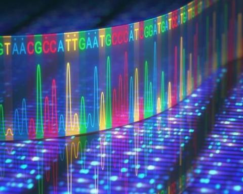 """科学家研制最新技术搜寻发生突变的""""暗基因组"""""""