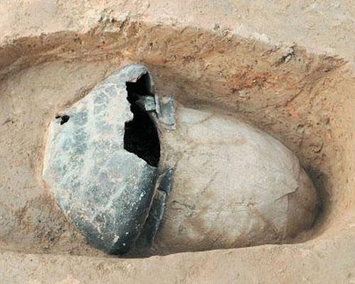 5000多年前中国先民已育蚕制丝