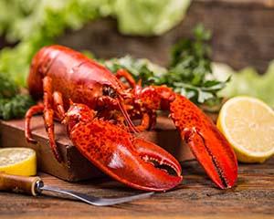加拿大海鲜食品贸易公司寻求合作伙伴开拓中国市场
