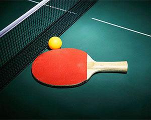 保加利亚乒乓球公开赛中国队夺2金